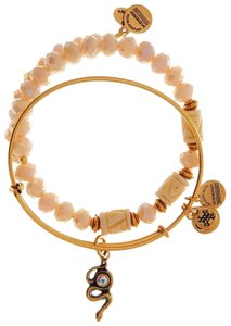 Alex and Ani ALEX AND ANI 2 BANGLE SET