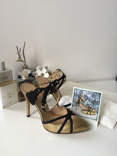 Charlotte Olympia Gold/Black Pumps