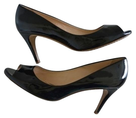 Theory Pumps