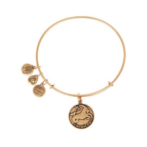 Alex and Ani Capricorn II Wire Bangle