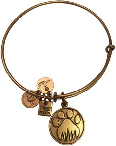 Alex and Ani paw/ skyline charm bracelet