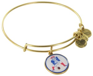 Preload https://item1.tradesy.com/images/alex-and-ani-russian-gold-as14nep03rg-pat-the-patriot-new-england-bracelet-23476405-0-1.jpg?width=440&height=440