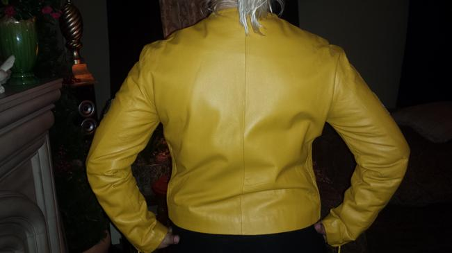 Italian design 10/12 Motorcycle Jacket Image 3