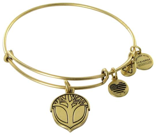 Preload https://item2.tradesy.com/images/alex-and-ani-rafaelian-gold-unexpected-miracles-expandable-ewb-bracelet-23476841-0-1.jpg?width=440&height=440