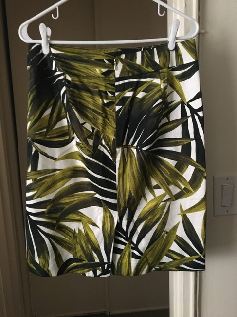 Ann Taylor Skirt Green and White