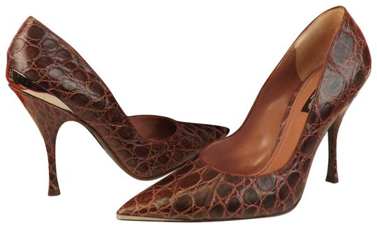 Preload https://img-static.tradesy.com/item/23545846/dolce-and-gabbana-brown-burgundy-natural-crocodile-leather-pointed-pumps-size-eu-39-approx-us-9-regu-0-1-540-540.jpg