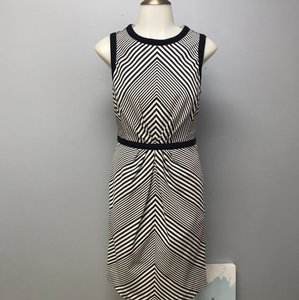 Shoshanna short dress Navy White Sleeveless Audrey Tiffany Style on Tradesy
