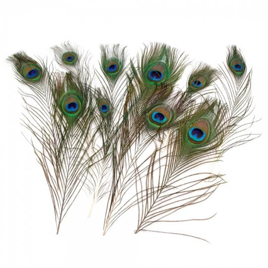 Preload https://img-static.tradesy.com/item/23660966/multicolor-50-pack-natural-peacock-feathers-10-12-centerpiece-0-0-540-540.jpg