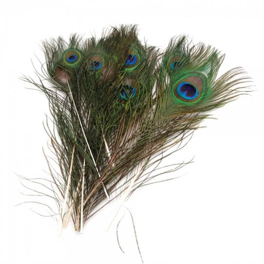 Preload https://img-static.tradesy.com/item/23661040/multicolor-100-pack-natural-peacock-feathers-10-12-centerpiece-0-0-540-540.jpg