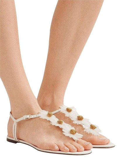 Preload https://img-static.tradesy.com/item/23691213/charlotte-olympia-white-posey-appliqued-sandals-size-eu-39-approx-us-9-regular-m-b-0-5-540-540.jpg
