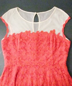 Anthropologie Lace Mirror Of Venus Fit Flare Rose Illusion Dress