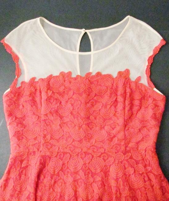 Anthropologie Lace Mirror Of Venus Fit Flare Rose Illusion Dress Image 0