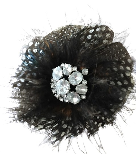 Preload https://item4.tradesy.com/images/stella-and-dot-plume-brooch-black-2372263-0-0.jpg?width=440&height=440