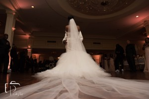 Vera Wang Bridal Ivory Long Cathedral Bridal Veil