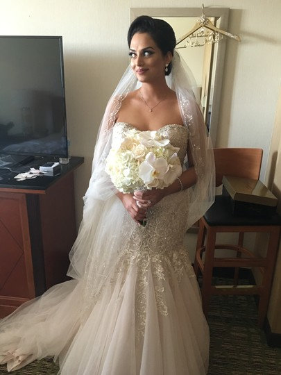 Preload https://img-static.tradesy.com/item/23779374/ivory-long-cathedral-bridal-veil-0-1-540-540.jpg