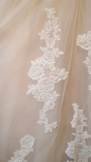 Alfred Angelo Champagne with Ivory Overlay Lace Tulle Satin Underneath 2508 Formal Wedding Dress Size 18 (XL, Plus 0x) Image 1