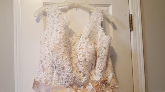 Alfred Angelo Champagne with Ivory Overlay Lace Tulle Satin Underneath 2508 Formal Wedding Dress Size 18 (XL, Plus 0x) Image 3