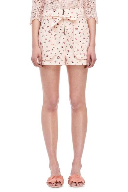 Preload https://img-static.tradesy.com/item/23842279/rebecca-taylor-ballet-mia-floral-front-117973p911-sz0-shorts-size-0-xs-25-0-0-650-650.jpg
