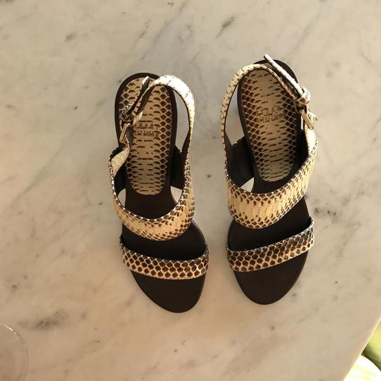 Stuart Weitzman gray and cream Python Sandals Image 2