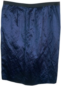 Lanvin Minimalist France Skirt blue