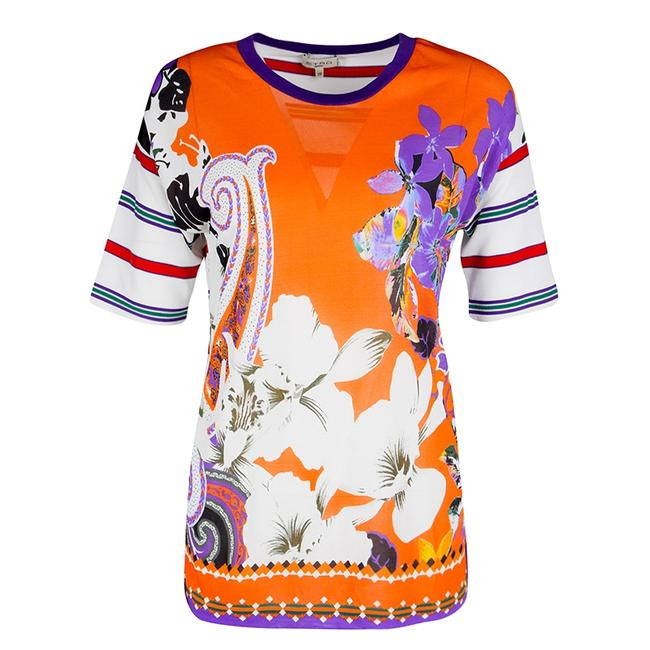 Preload https://img-static.tradesy.com/item/23917409/etro-multicolor-floral-printed-and-striped-mesh-short-sleeve-s-blouse-size-4-s-0-0-650-650.jpg