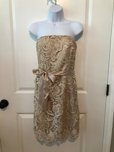 Adrianna Papell Champagne Lace Strapless Feminine Bridesmaid/Mob Dress Size 2 (XS)