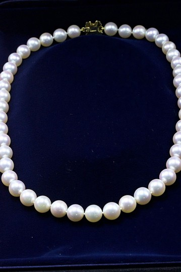 Tiffany & Co. Akoya Cultured Pearl Signature 18k Yellow Gold Appraisal Necklace Image 8