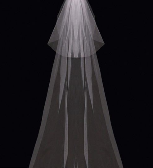 Preload https://img-static.tradesy.com/item/23937086/envogue-bridal-blush-long-cathedral-style-v03c-bridal-veil-0-0-540-540.jpg