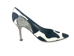 Manolo Blahnik Ponyhair Pointed Black White Pumps