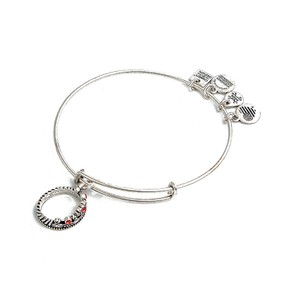 Alex and Ani BRAND NEW Alex and Ani Queen's Crown Charm Expandable Bangle