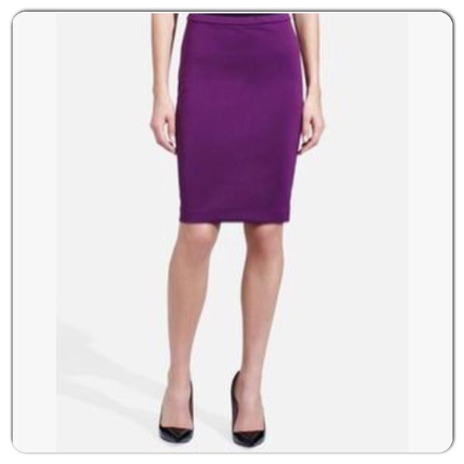 Preload https://item4.tradesy.com/images/the-limited-purple-pencil-knee-length-skirt-size-8-m-29-30-23973228-0-0.jpg?width=400&height=650