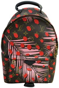 Louis Vuitton Canvas Springs Backpack