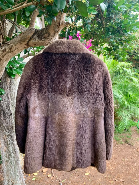 other Bohemian Vintage Imported Sheared Nutria Fur Coat Image 4