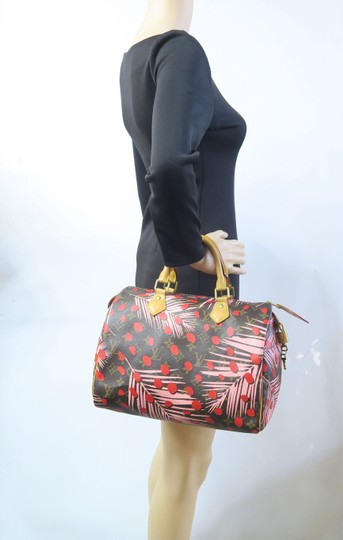 Louis Vuitton Canvas Brown-pink-red Speedy Tote in Brown & Pink & Red Image 11