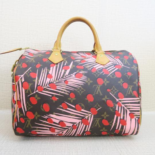 Louis Vuitton Canvas Brown-pink-red Speedy Tote in Brown & Pink & Red Image 2