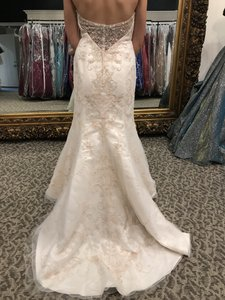 Casablanca Champagne/Ivory/Gold/Silver Tulle/Lace 2189 Modern Wedding Dress Size 6 (S)