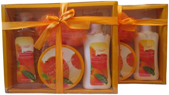 Preload https://img-static.tradesy.com/item/24097266/orange-citrus-and-mango-paradise-4-piece-set-for-women-two-2-sets-0-1-540-540.jpg