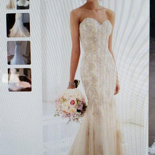 Stella York Champagne Beaded Gold Gown with Tuile. 5986dmzp Formal Wedding Dress Size 8 (M) Image 5