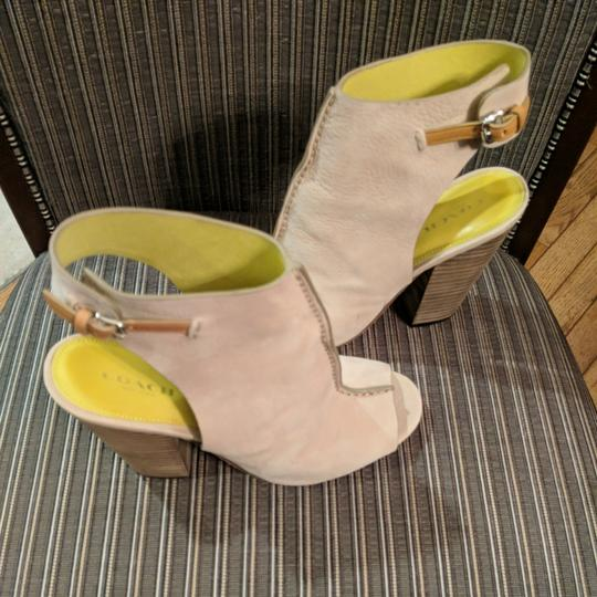 Coach Leather Suede Mine grey/ Natural Mules