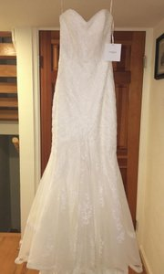 Pronovias Ivory Petit Pois Tulle and Guipure Lace Ombera Modern Wedding Dress Size 4 (S)