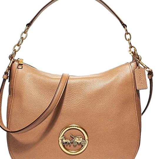 Preload https://img-static.tradesy.com/item/24148195/coach-elle-hobolike-butta-acorn-leather-hobo-bag-0-1-540-540.jpg