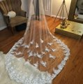 White Long Cathedral Style Bridal Veil