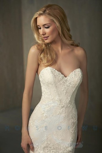 Adrianna Papell Ivory Over Light Gold Lace/Tulle/Grosgrain 31052 Feminine Wedding Dress Size 14 (L) Image 2