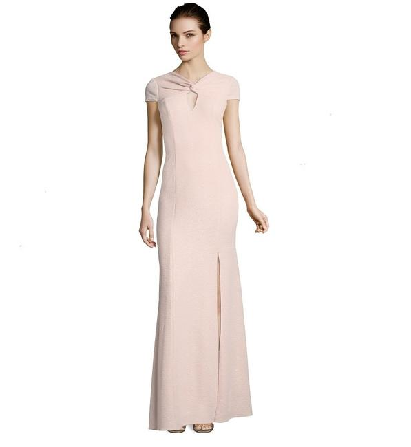 Preload https://img-static.tradesy.com/item/24192409/adrianna-papell-blush-ap1e203510-long-formal-dress-size-10-m-0-0-650-650.jpg