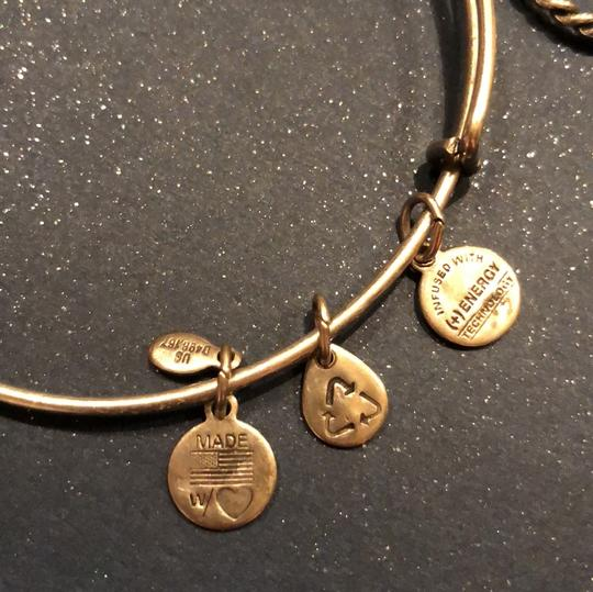 Alex and Ani Alex and Ani Anchor and Rope Bangle 23383720 Image 2
