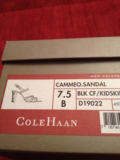 Cole Haan Black Sandals Image 7