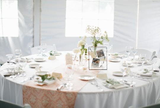 Preload https://img-static.tradesy.com/item/24290472/blush-and-cream-table-runners-centerpiece-0-0-540-540.jpg