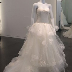 Vera Wang Bridal Ivory Tulle Ball Gown Princess For The Day Traditional Wedding Dress Size 16 (XL, Plus 0x)