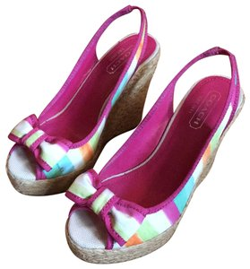Coach watercolor Wedges