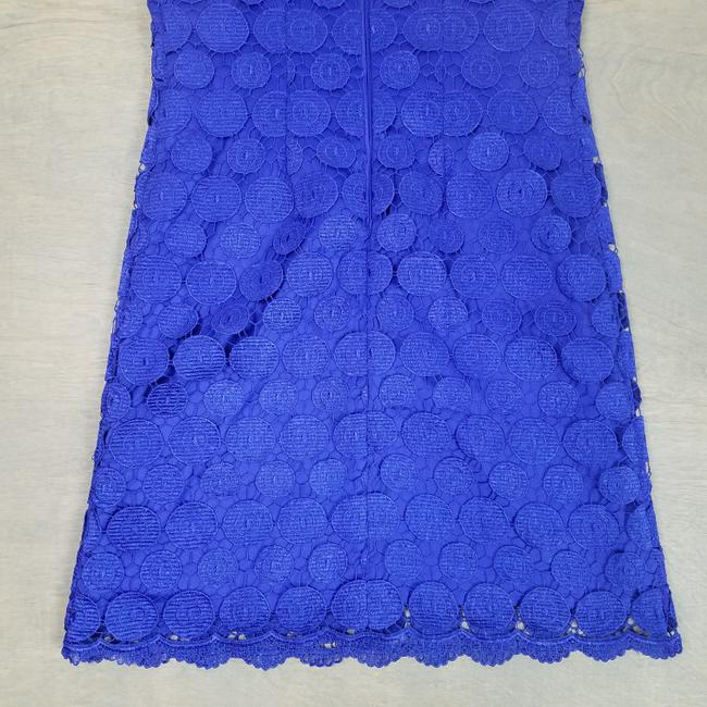 Eliza J Royal Lace Sleeveless Minimalist Dress